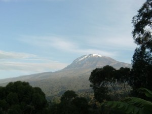 Mt. Kilimanjaro is the tallest freestanding mountain